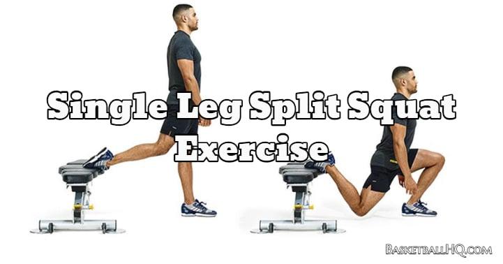Single Leg Split Squat Exercise